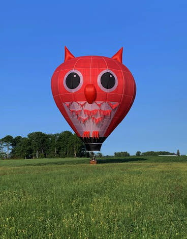 Red Owl Special Shape Hot Air Balloon
